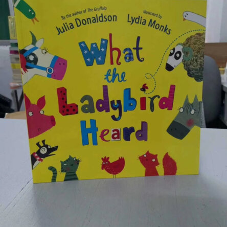 What the Ladybird Heard Book Set