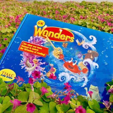 Wonders Box Set