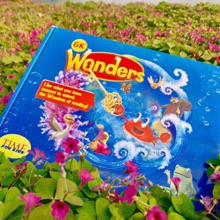 Wonders Box Set